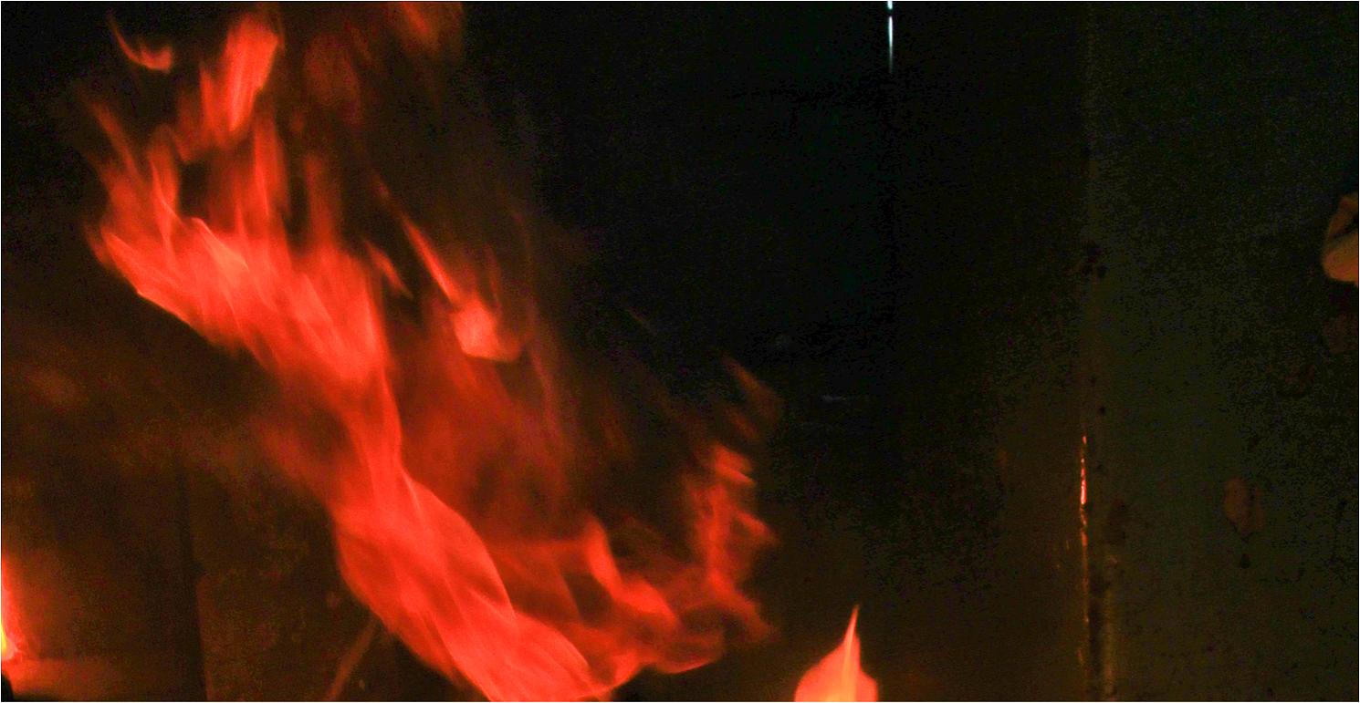 Die Schmiede brennt 1917